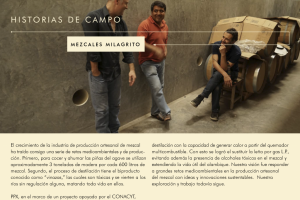 PPX_REPORTEANUAL_ESP_Página_19